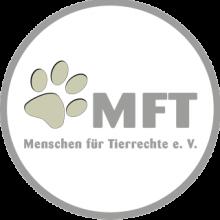 MFT Minden
